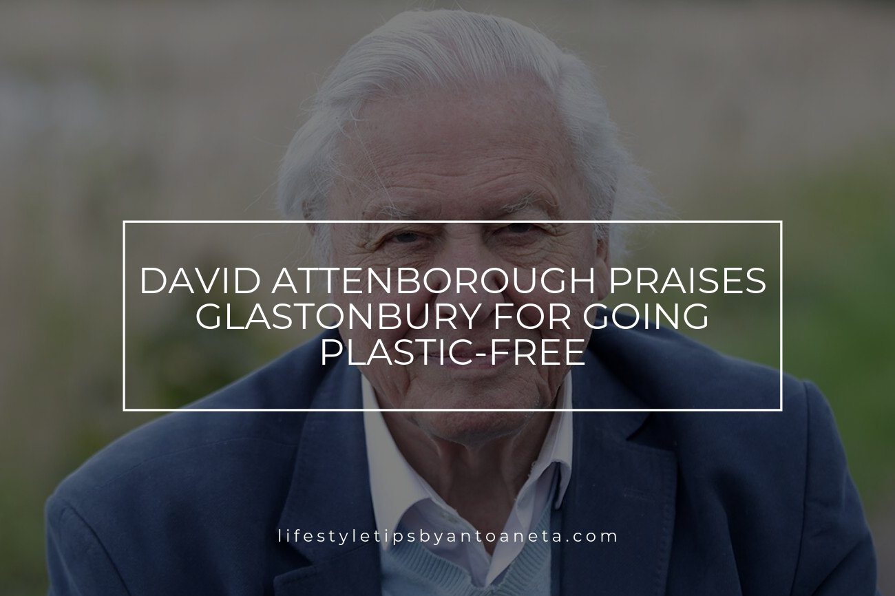 David Attenborough Praises Glastonbury For Going Plastic Free