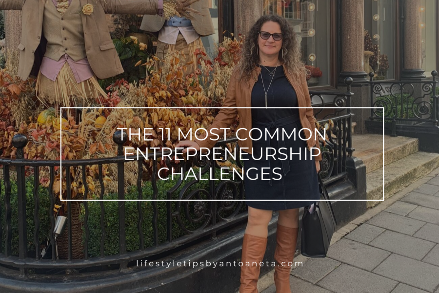 The 11 most common Entrepreneurship Challenges – My Business Ideas