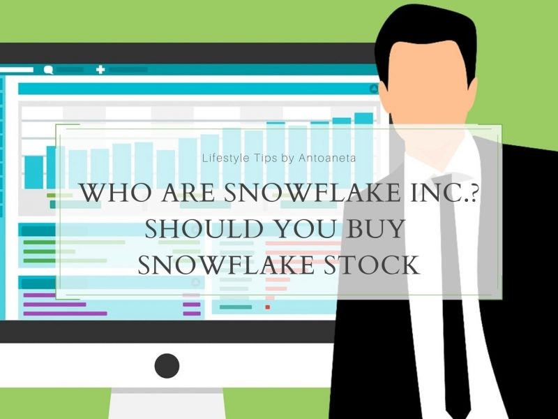Who Are Snowflake Inc. Should You Buy Snowflake Stock
