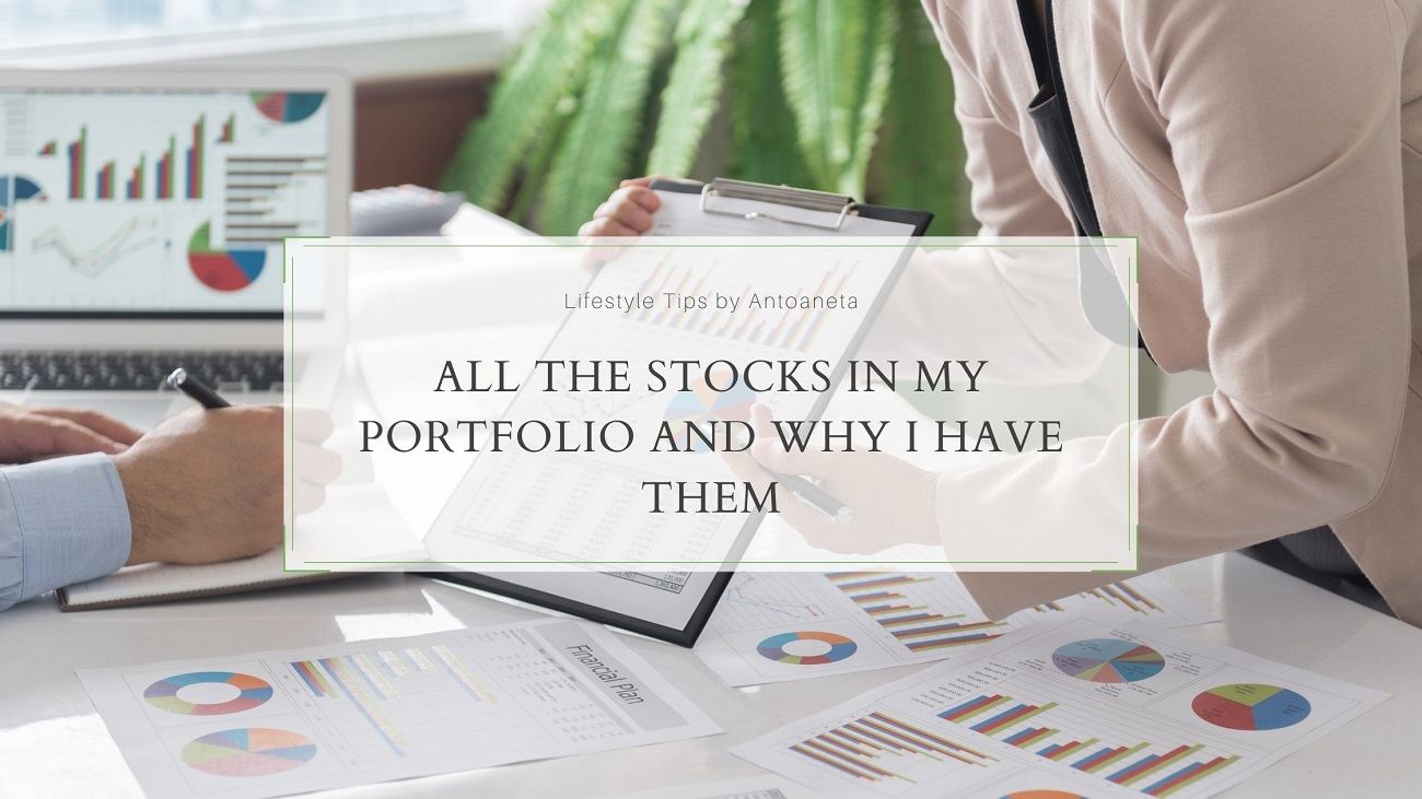 All The Stocks In My Portfolio And Why I Have Them