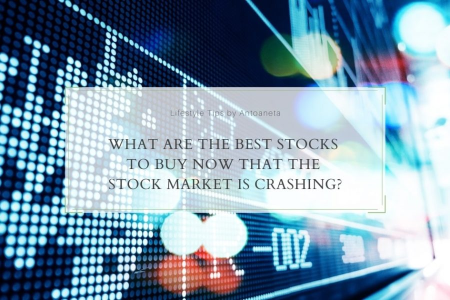 What Are The Best Stocks To Buy Now That The Stock Market Is Crashing?