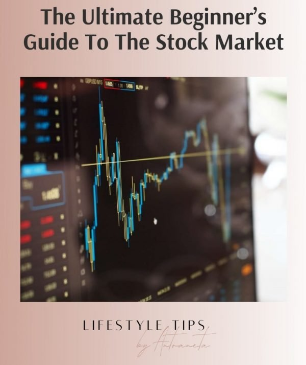 The Ultimate Beginner's Guide To The Stock Market Ebook